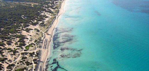"""Artículo de prensa """"Cambio climático: una amenaza real"""" Periódico de Ibiza"""