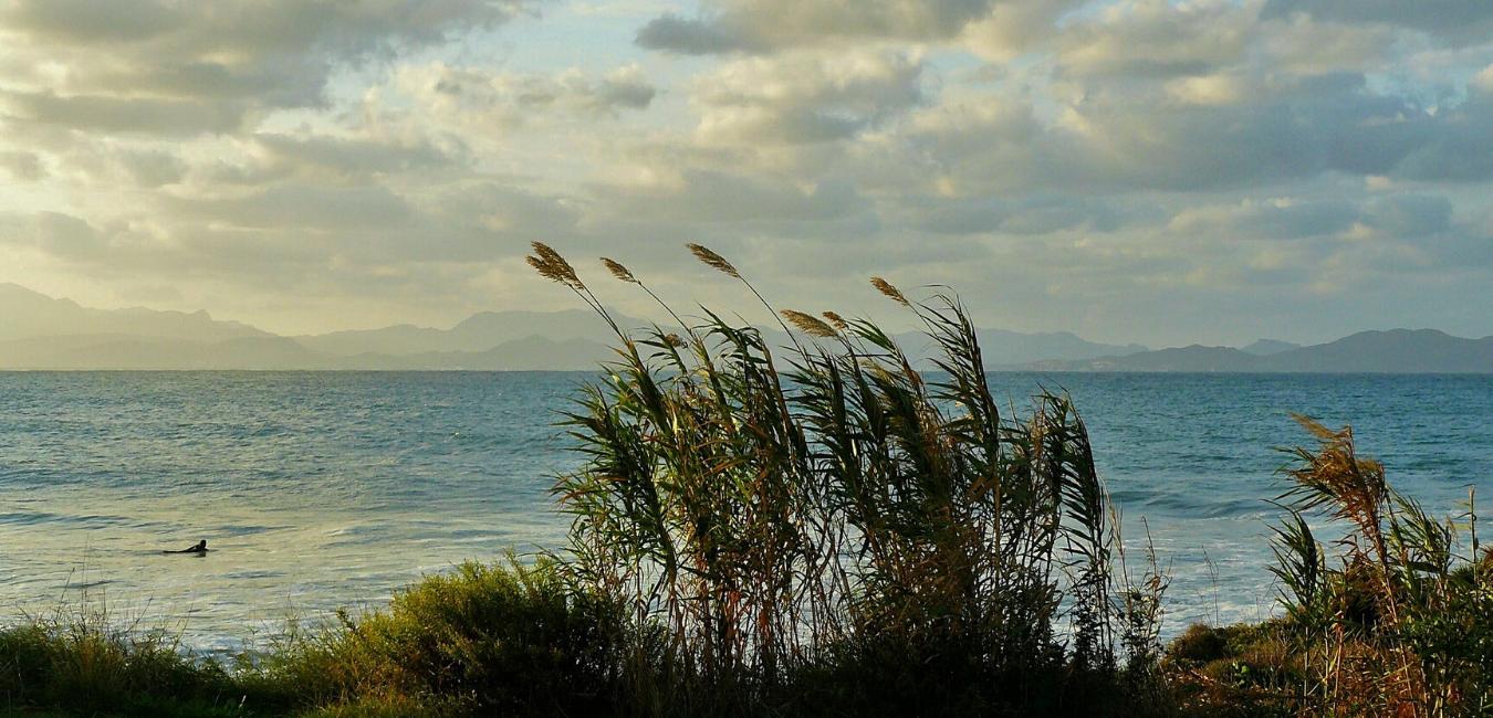 El canvi climàtic a les Illes Balears. Impactes i perspectives