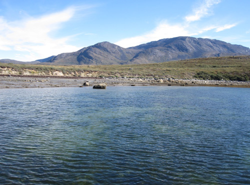 «The expansion of underwater meadows in the Arctic creates new carbon sinks» Spanish National Research Council (CSIC)