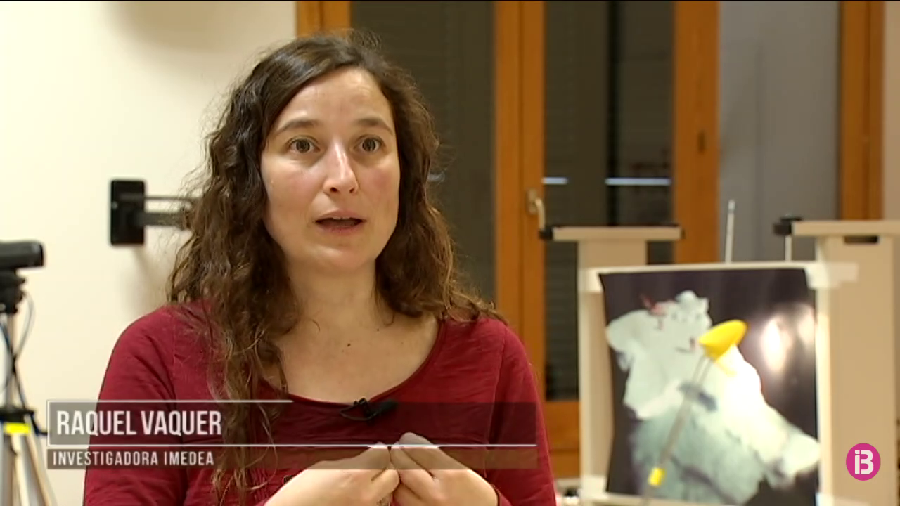 IB3 Méteo, temps i natura «L`IMEDEA celebra la setmana de la ciència i la tecnologia»